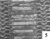 Бехтерец, найденный в р. Воже. XVII в.